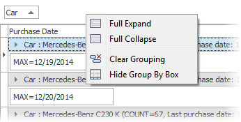 DevExpress VCL Grid Control - Group By Box Context Menu