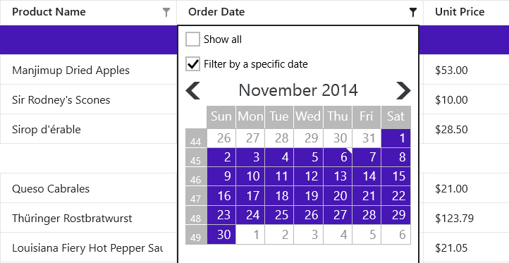 Windows 8 Grid - Date-Time Column Filter
