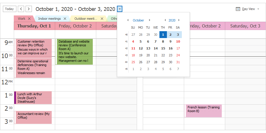 Dropdown Calendar - WinForms Scheduler Control | DevExpress