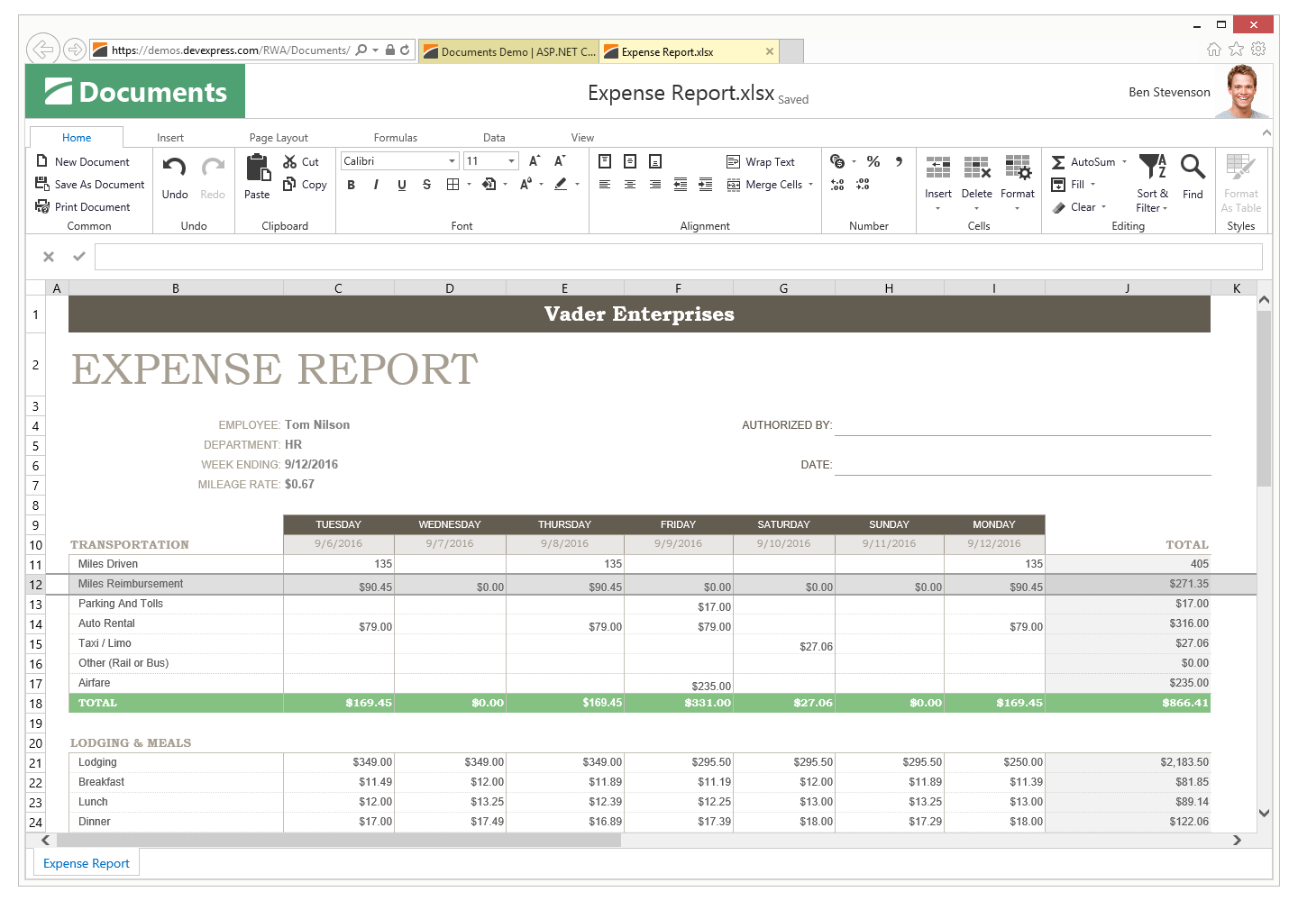 Expense Report - ASP.NET Spreadsheet, DevExpress