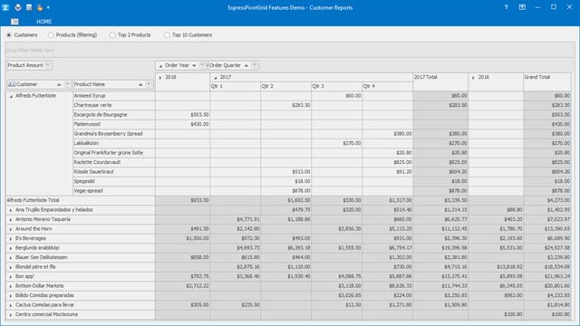 VCL Pivot Table - DevExpress Pivot Grid Control for Delphi