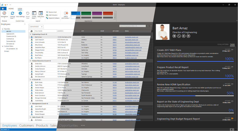 Office 2019 White, Dark Gray and Black Skins for WinForms, DevExpress